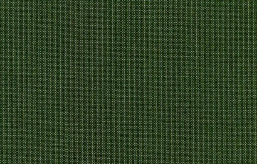 314 043 Moss