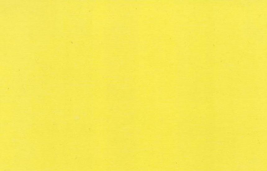 314 113 Lemon