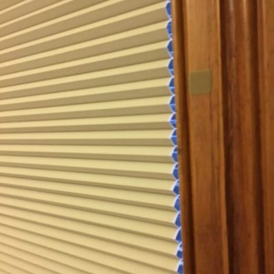 Honeycomb blinds in Kohimarama