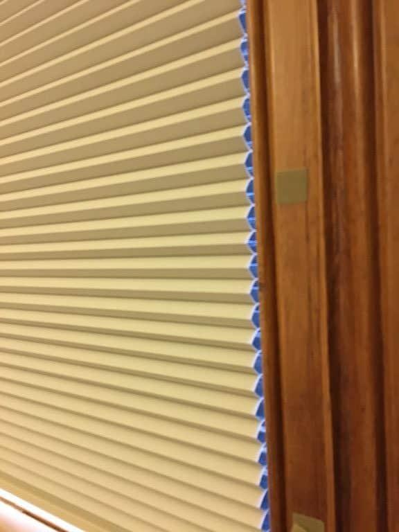 Honeycomb blinds in Kohimarama