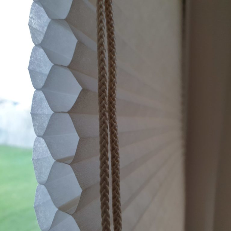Double cell translucent honeycomb blinds