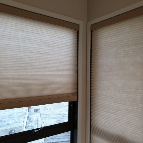 Light filtering honeycomb blinds in Eden Terrace